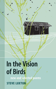 inTheVisionOfBirds cover.jpg