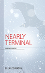 Nearly Terminal Cover small